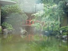 のぶちんのツボ-ホテルの中庭2