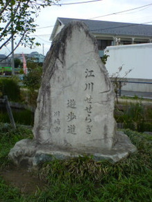 のぶちんのツボ-遊歩道1