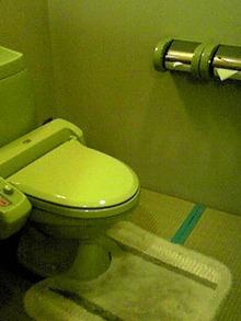 のぶちんのツボ-畳敷きのトイレ